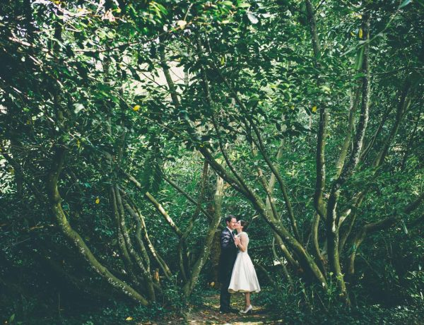clearwell-castle-forest-of-dean-wedding